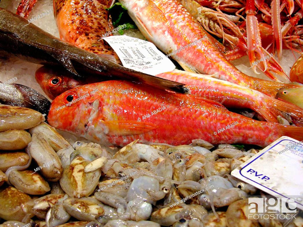 Stock Photo: Red mullets for sale in la Boqueria Market. Barcelona. Spain.