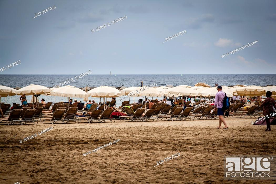 Stock Photo: Sun loungers and straw shade umbrellas on a beach by the Mediterranean Sea.