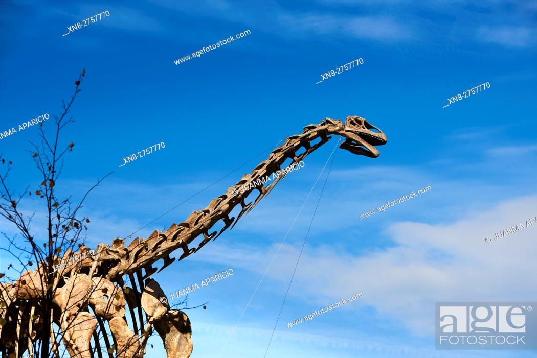 Imagen: Dinosaur Skeleton, Bilbao, Biscay, Basque Country, Euskadi, Euskal Herria, Spain, Europe.