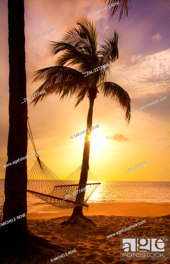 Stock Photo: Old Bahama Bay Resort in West End, Bahamas hammock on the beach with palm tree.