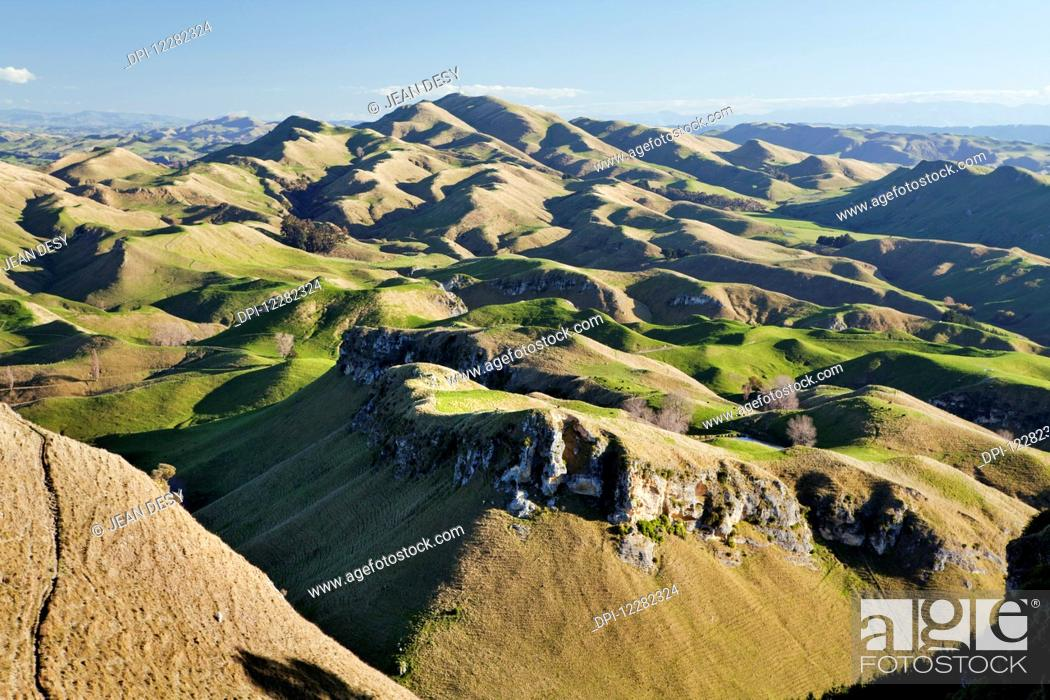 Stock Photo: Panorama of wavy mountains and pastures for sheep; North Island, New Zealand.