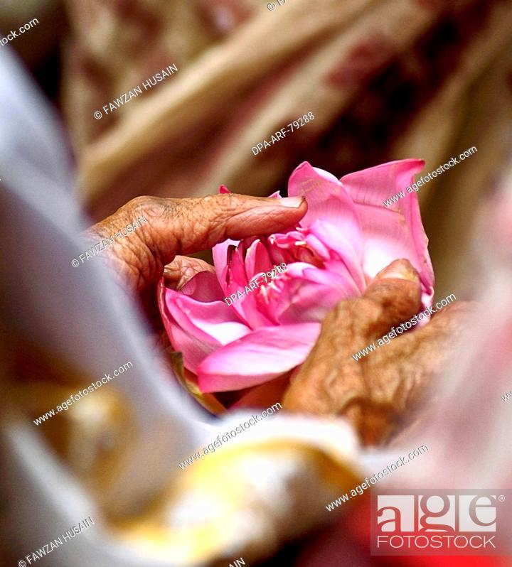 Man Holding Lotus Flower In His Hand For Prayers India Stock
