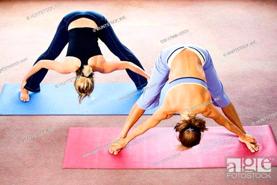 Imagen: View of two women exercising.