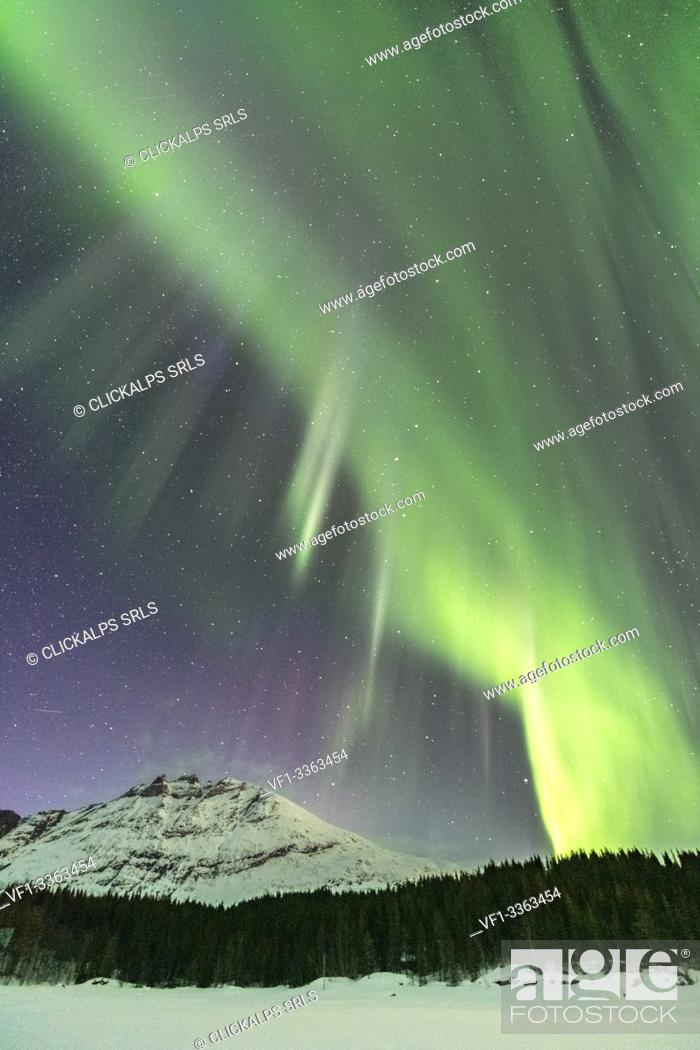 Stock Photo: Northern lights in the sky above Skoddebergvatnet lake. Grovfjord, Troms county, Northern Norway, Norway.