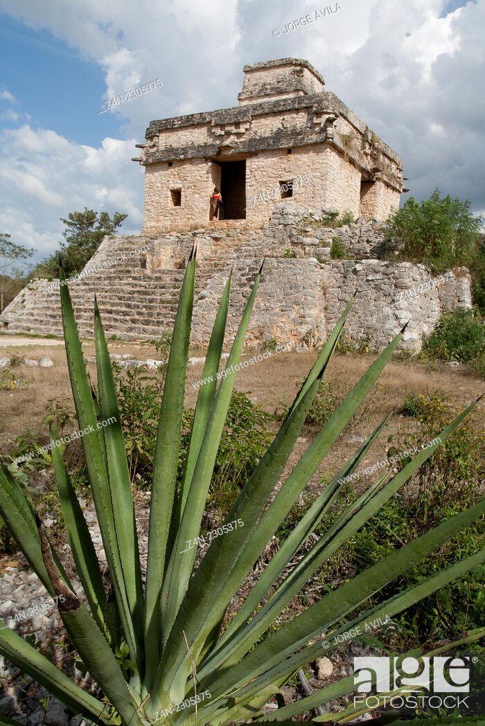 Stock Photo: Dzibilchaltun, Maya site.