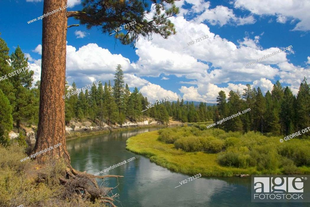 Stock Photo: Deschutes Wild and Scenic River from Don McGregor Memorial Viewpoint, La Pine State Park, Oregon, USA.