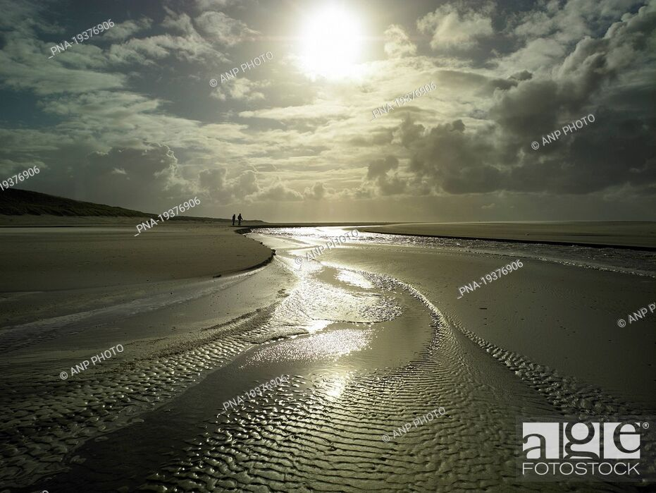Stock Photo: Texel, Wadden islands, North Holland, The Netherlands, Holland, Europe.
