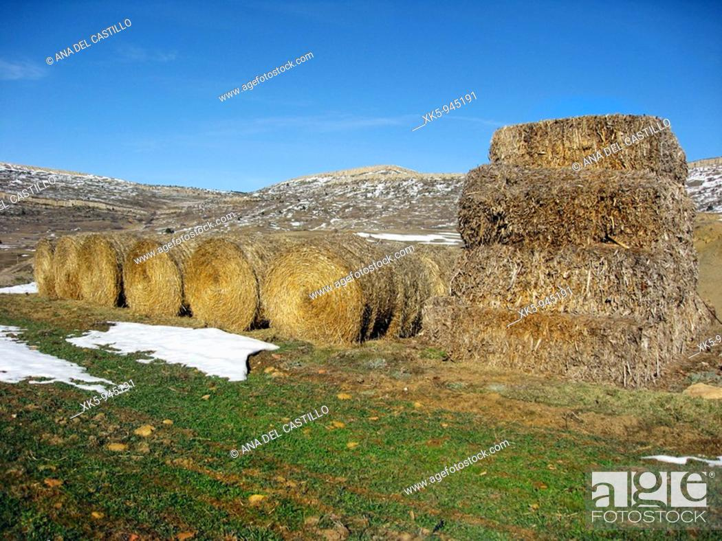 Stock Photo: Country landscape, Alcala de la Selva, Teruel province, Aragon, Spain.