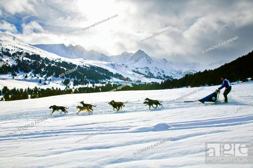 Stock Photo: Ski Station  Grand Valira  Grau Roig  Encamp Province  Andorra  Pirena  Sled dog race in the Pyrenees going through Spain, Andorra and France.