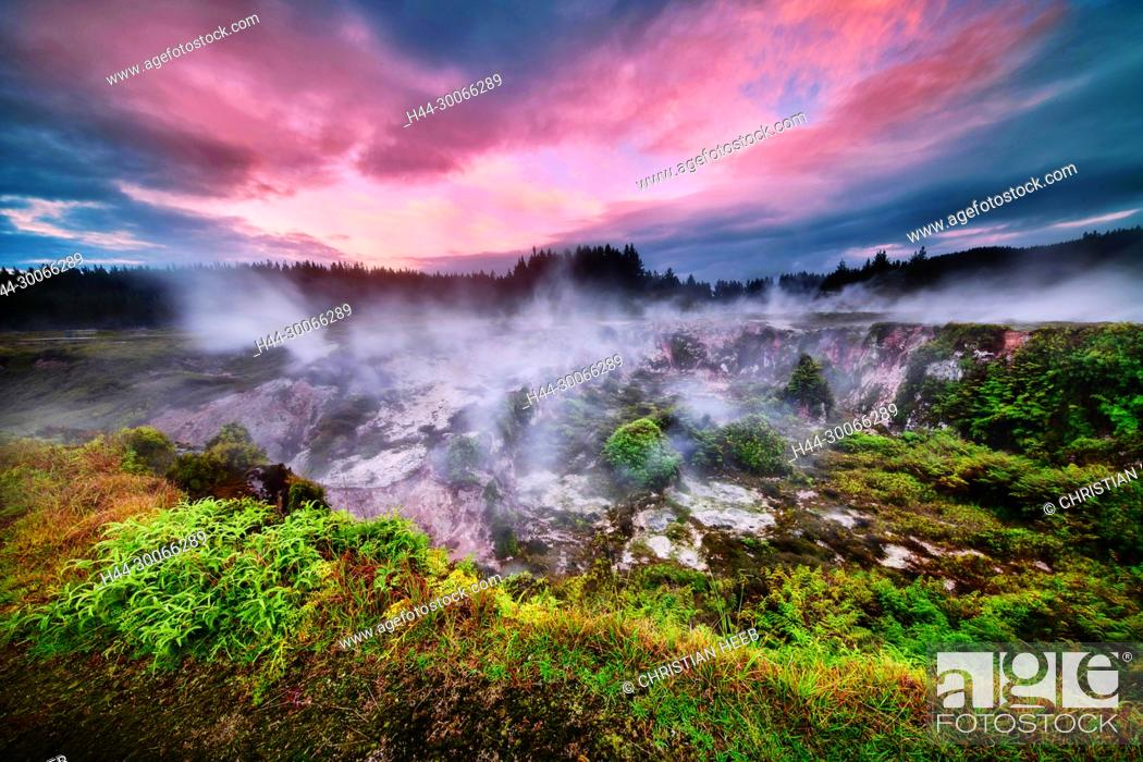 Stock Photo: Oceania, New Zealand, Aotearoa, North Island, Taupo, Craters of the Moon, Thermal Area.