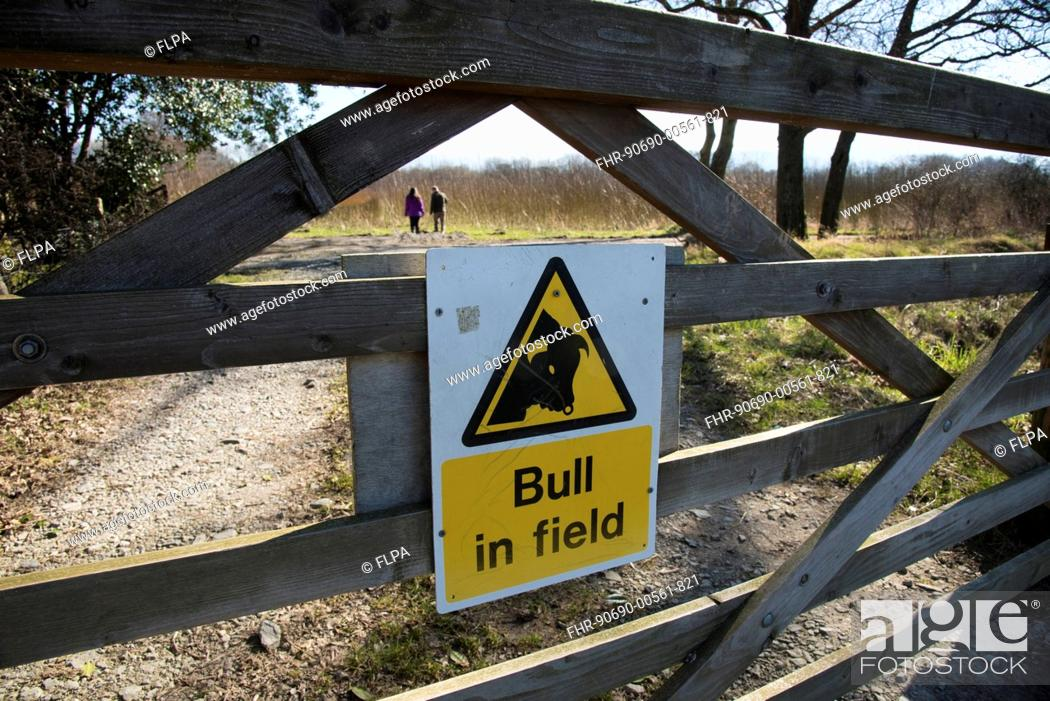 Stock Photo: 'Bull in field' sign on wooden gate, Keswick, Lake District, Cumbria, England, March.