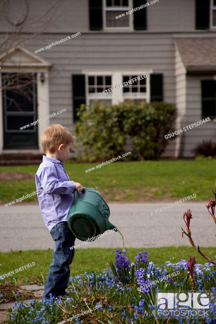 Stock Photo: Young Boy Watering Flowers in Front Yard Garden.