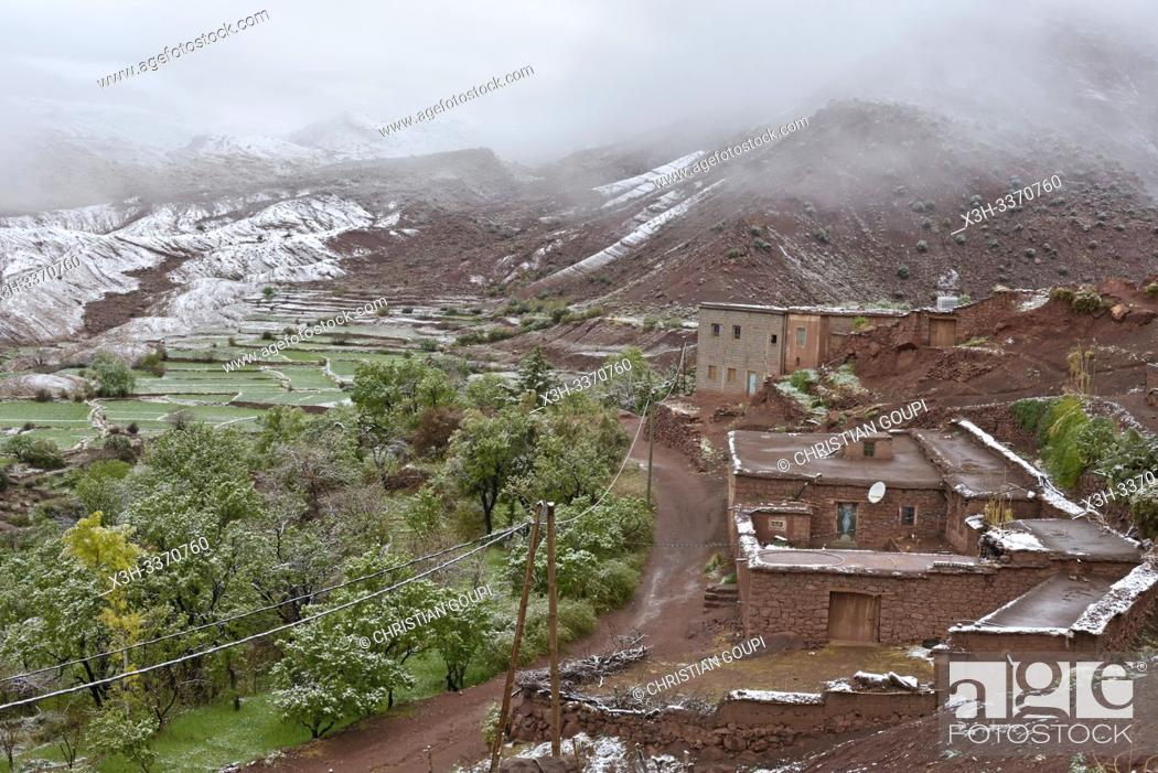 Stock Photo: view of the village of Tighza under a thin layer of snow, Ounila River valley, Ouarzazate Province, region of Draa-Tafilalet, Morocco, North West Africa.
