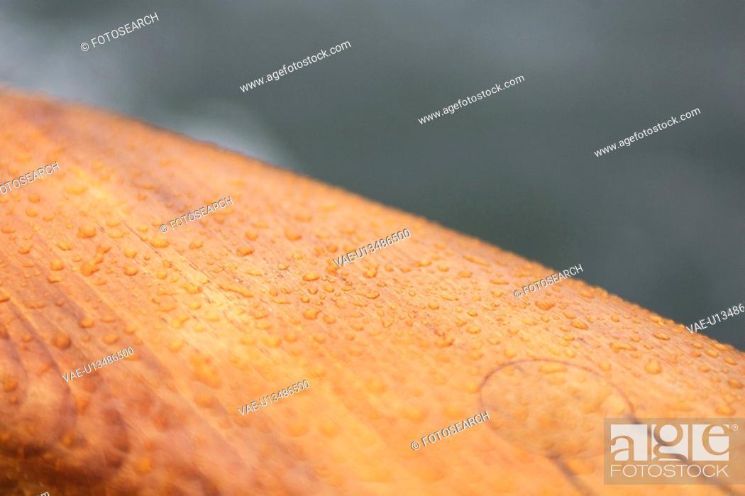Stock Photo: Close-Up, Design, Dew, Droplets, Drops.