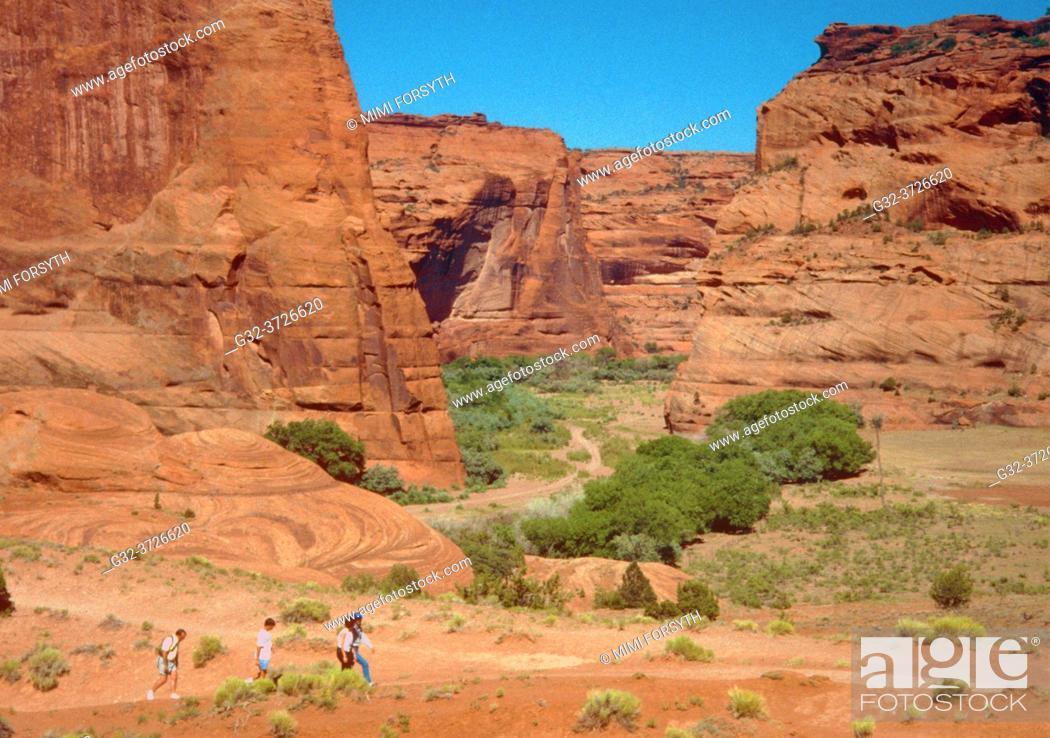Stock Photo: dwarfed hikers in Canyon de Chelly, Arizona.