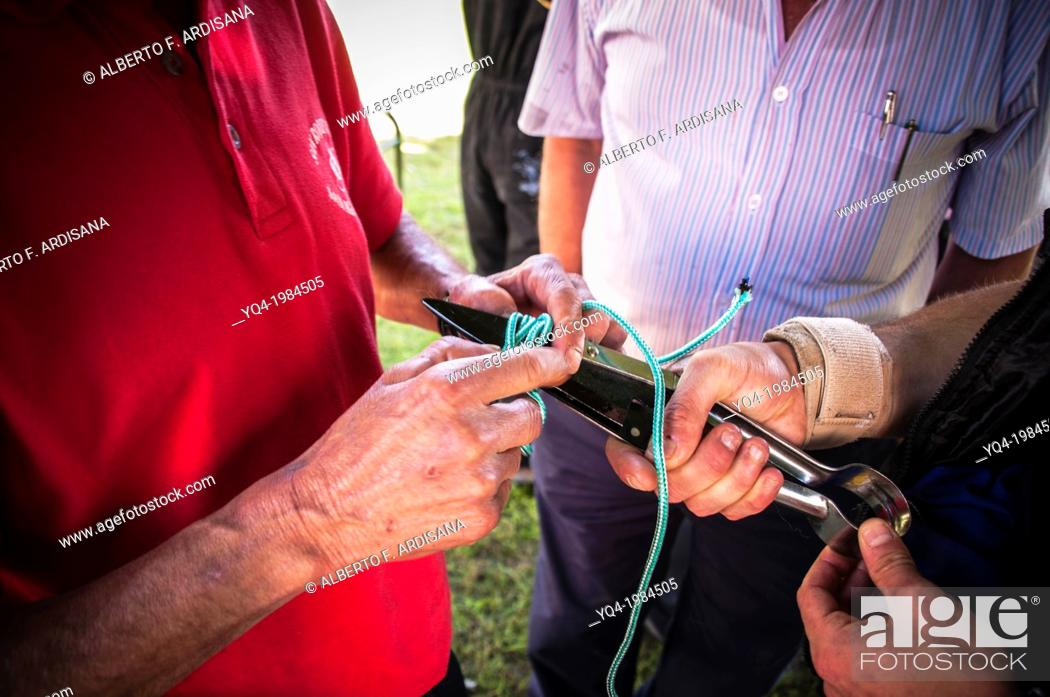 Stock Photo: These men, immobilized scissors through a string, to avoid opening before to be used .Sheep shearring, Asturias.