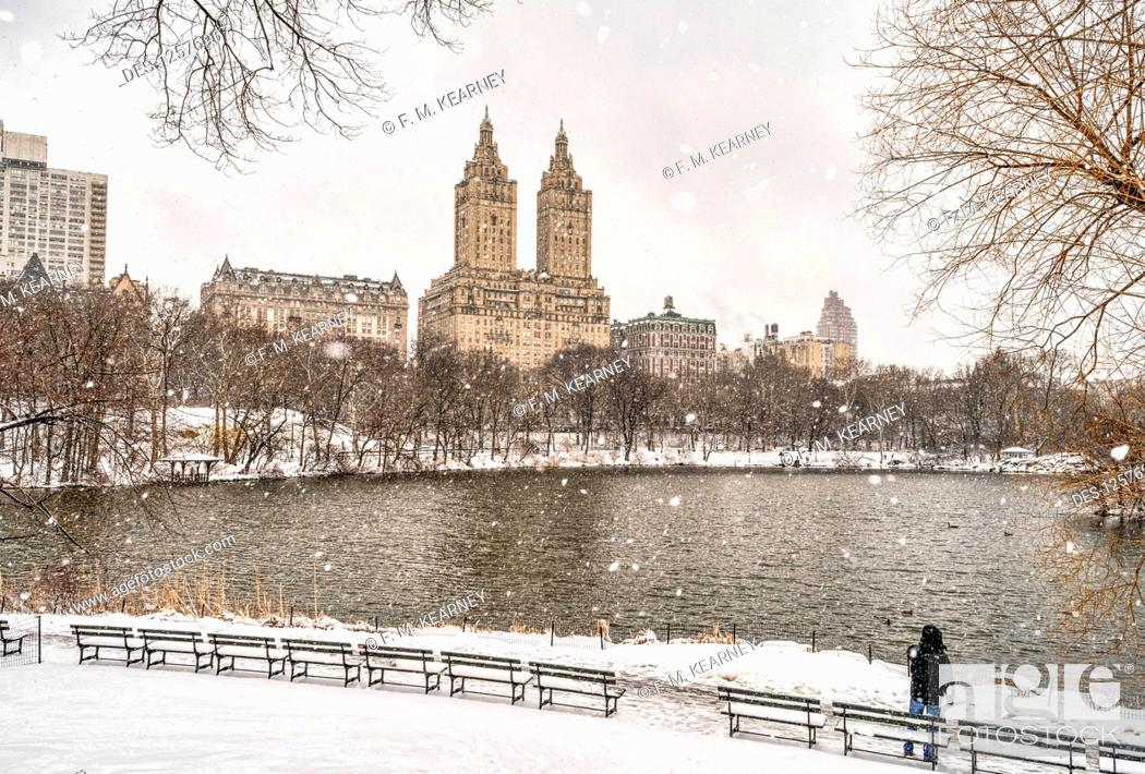 Stock Photo: Snowfall by the lake in Central Park; New York City, New York, United States of America.