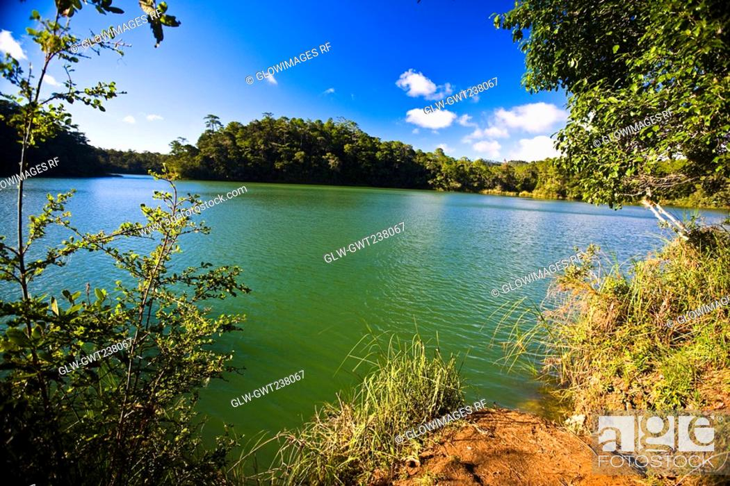 Stock Photo: Trees at the lakeside, Lagunas De Montebello National Park, Chiapas, Mexico.