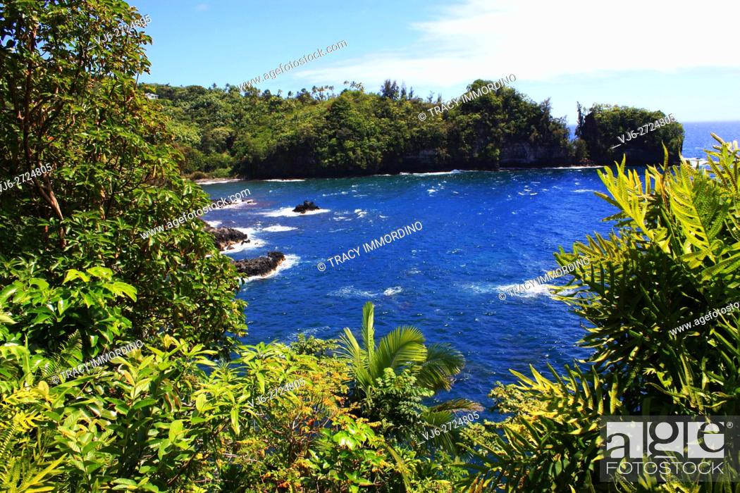 Stock Photo: View of Onomea Bay at the top of Donkey Trail in Papaikou, Hawaii, USA.