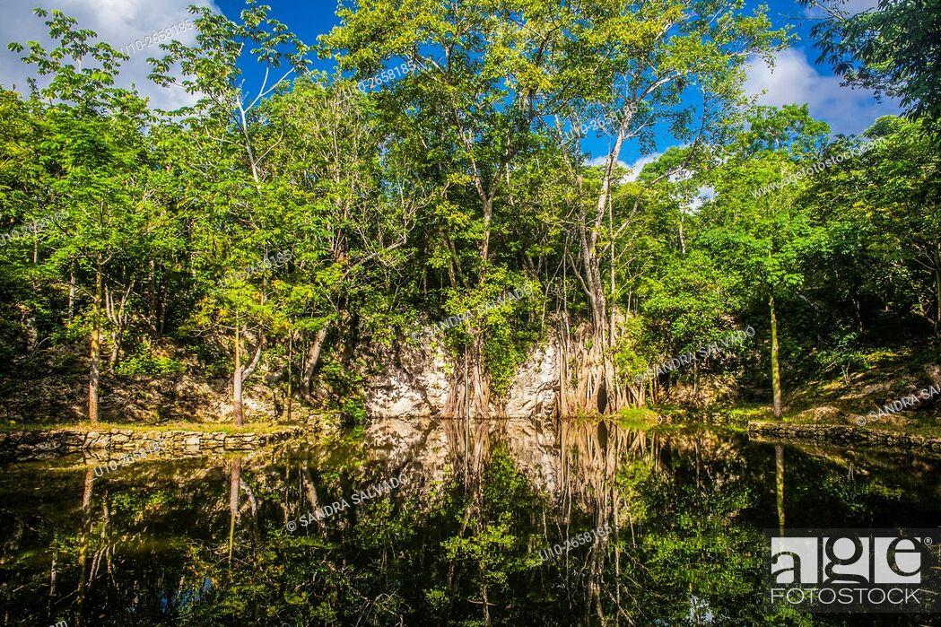 Stock Photo: Reserva T'ho, Puerto Morelos. Quinatana Roo, México.