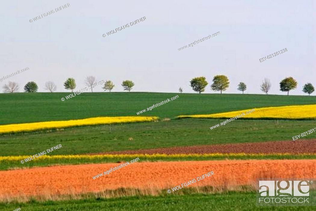 Stock Photo: bunte Landschaft.