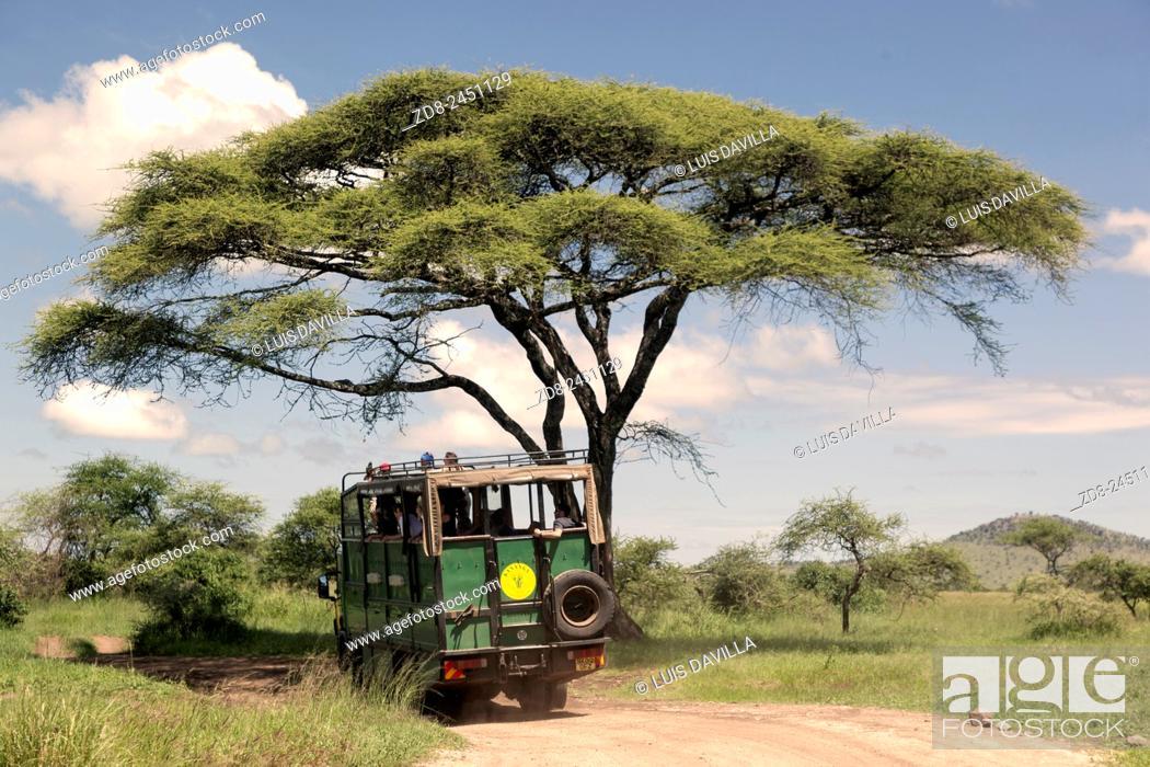 Imagen: truck safari in serengeti national park.
