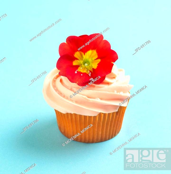 Stock Photo: Cupcake with Orange Frosting and Red Primrose Garnish.