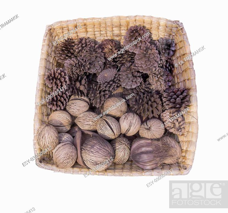 Stock Photo: pine cones and walnuts in basket.