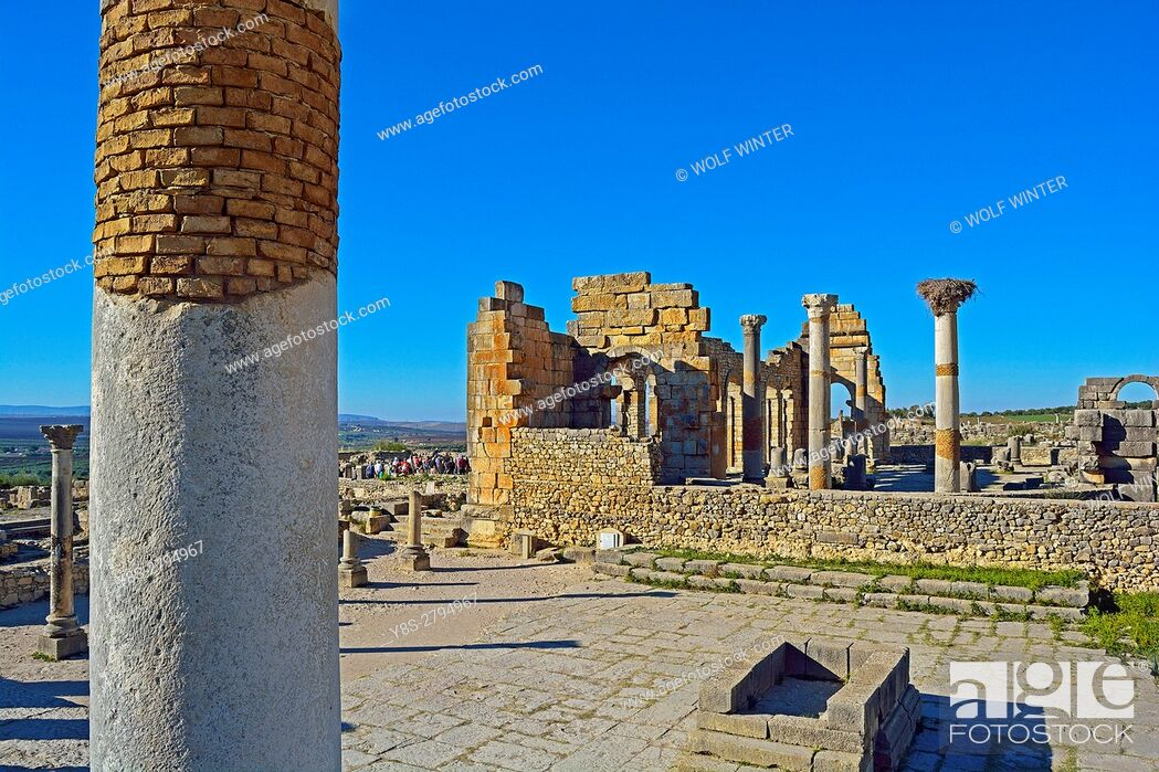 Stock Photo: Roman archaeological Site Volubilis, Middle Atlas, Morocco.