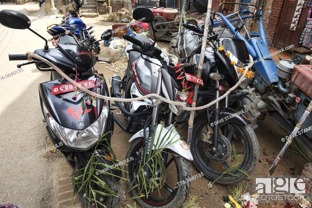 Imagen: Motorcycles covered with intestines during the Dasain holiday in which thousands of animals are slaughtered, Kathmandu, Nepal.