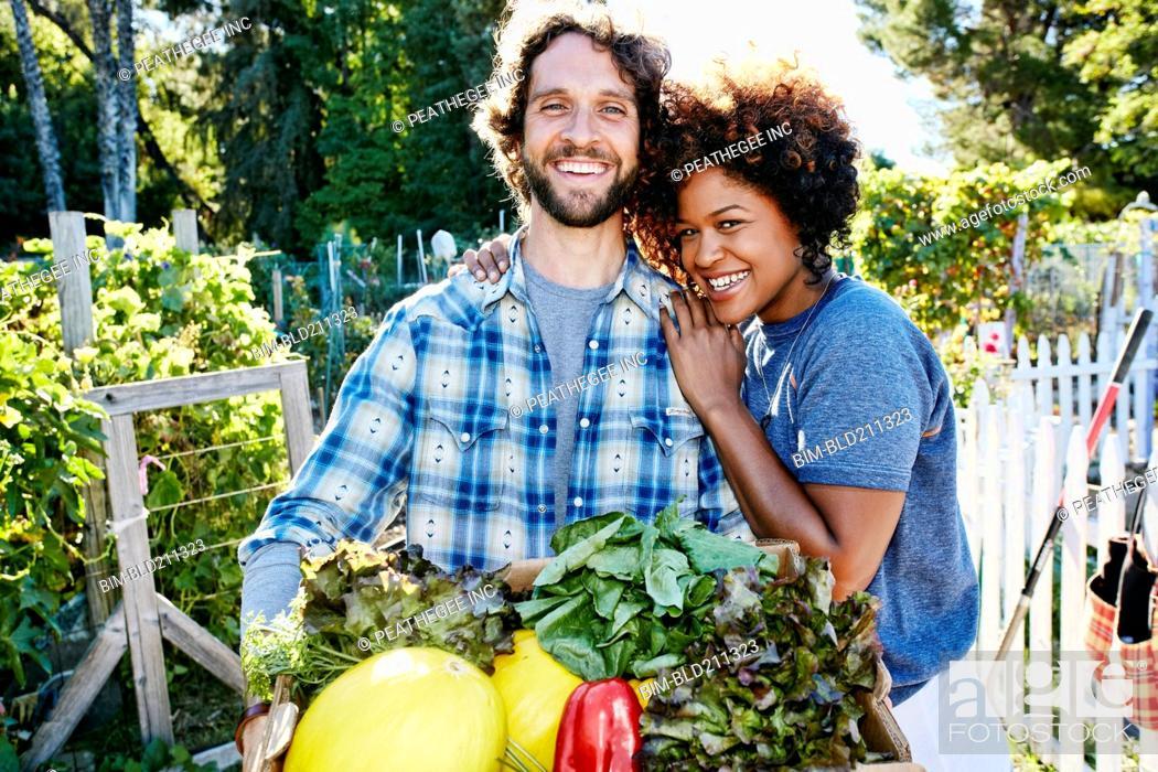 Stock Photo: Couple harvesting vegetables in garden.