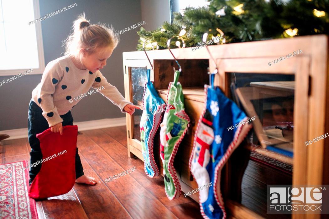 Stock Photo: Toddler girl hanging up Christmas stockings.