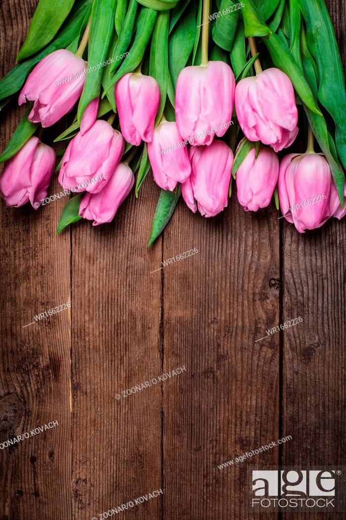 Stock Photo: Pink tulips over wooden table.