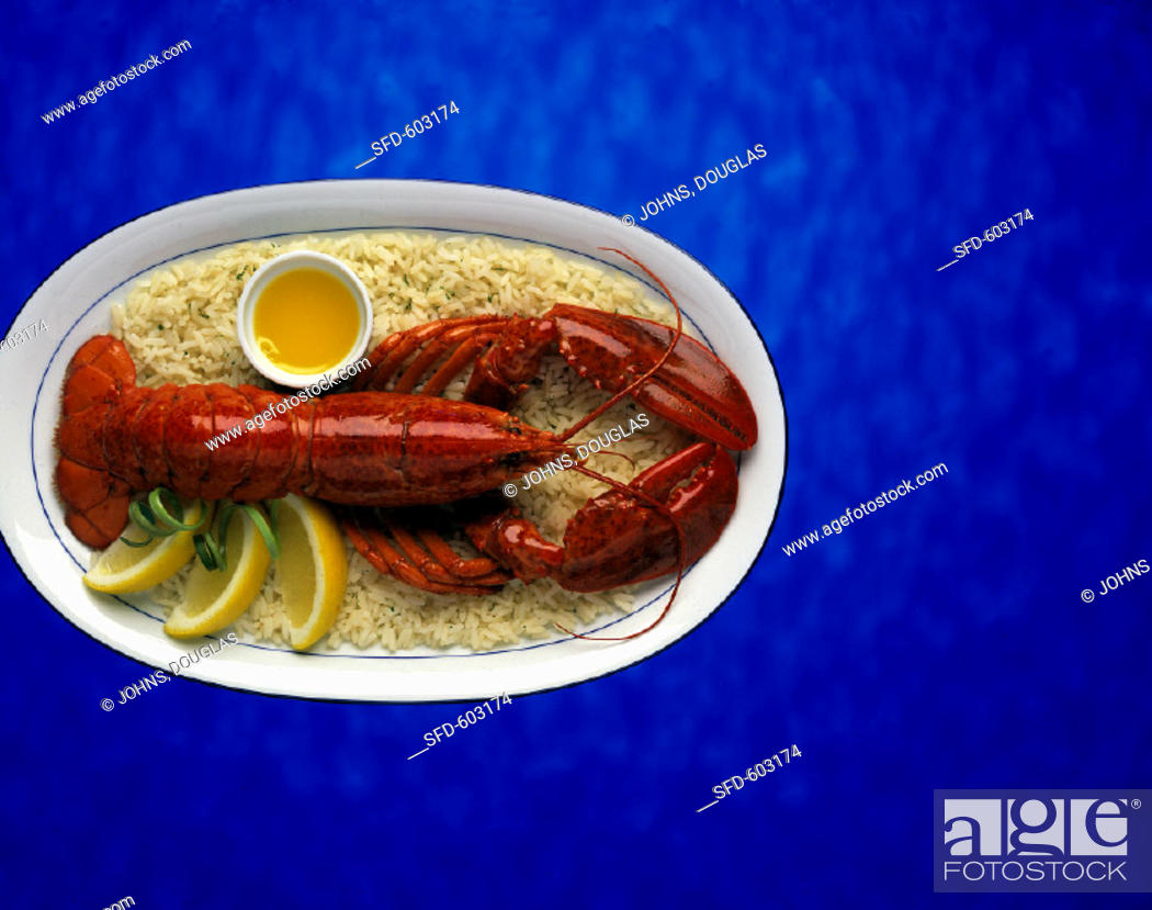 Stock Photo: Whole Cooked Lobster served on a bed of rice.