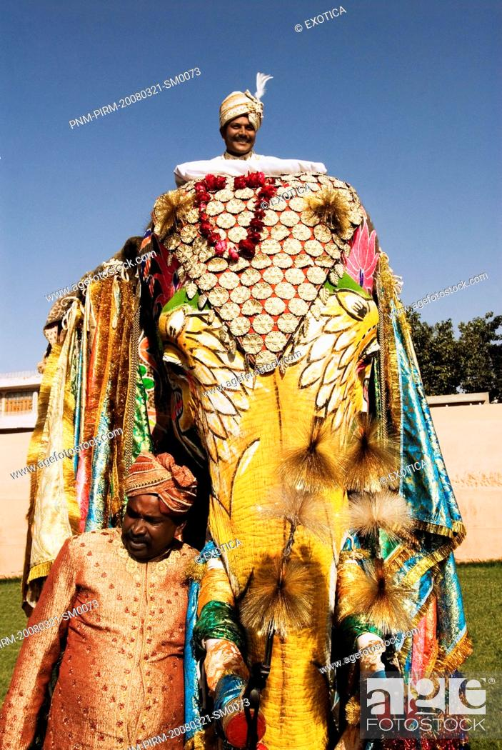 Stock Photo Man In Traditional Rajasthani Royal Dress On An Elephant Festival
