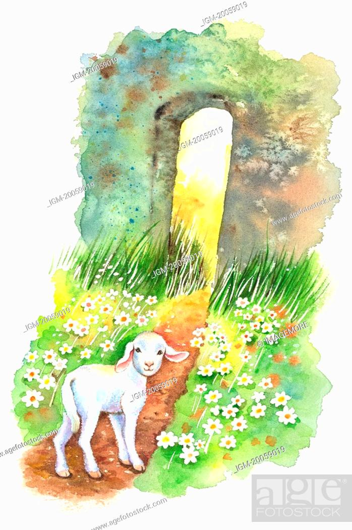 Stock Photo: Animal, Watercolor painting of a lamb walking to a wall with wildflowers.