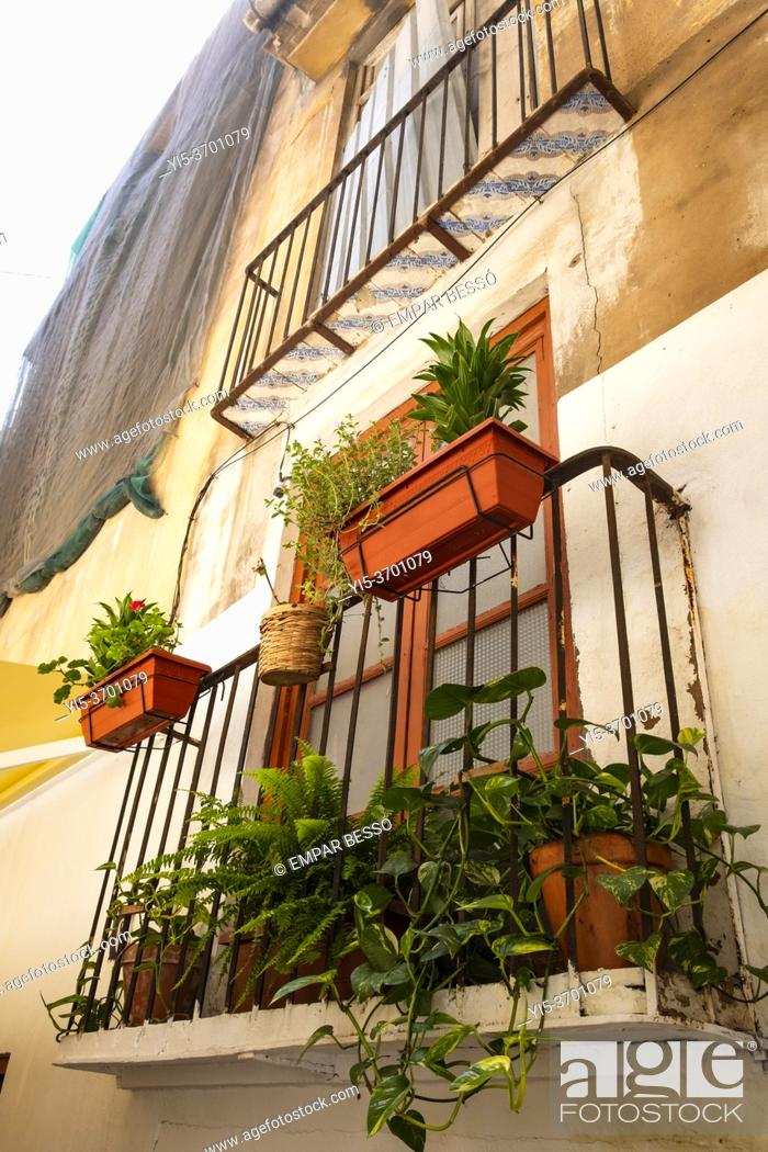 Stock Photo: An old balcony with plants in Ciutat Vella. València. Spain. 2020.