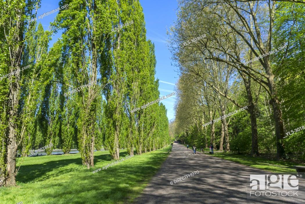 Imagen: Antony, France, Parc de Sceaux, Springtime, Urban Park, Scenic, Springtime.