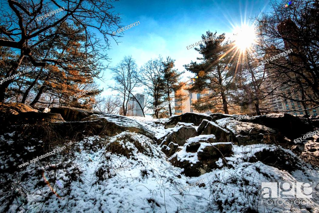 Stock Photo: Image of Central Park, NYC in the winter.