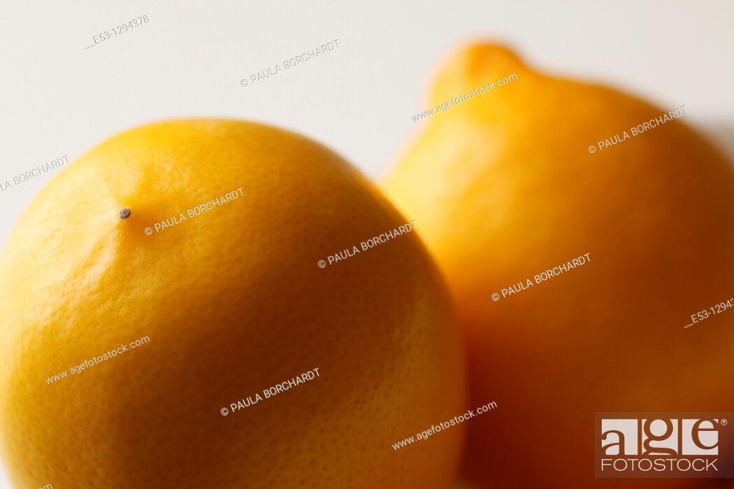 Stock Photo: Meyer lemons.