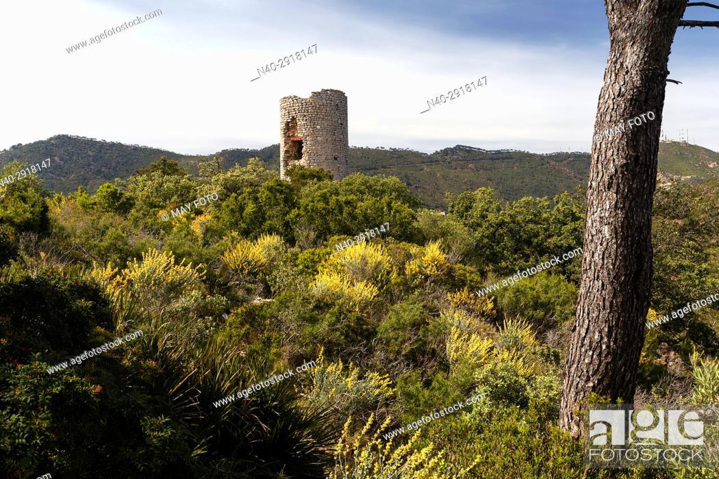 Stock Photo: Montornes castle, Miravet valley, Castellon, Benicassim.