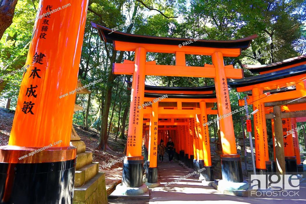 Stock Photo: Red torii gate tunnel at Fushimi Inari Shinto shrine in Kyoto, Japan.