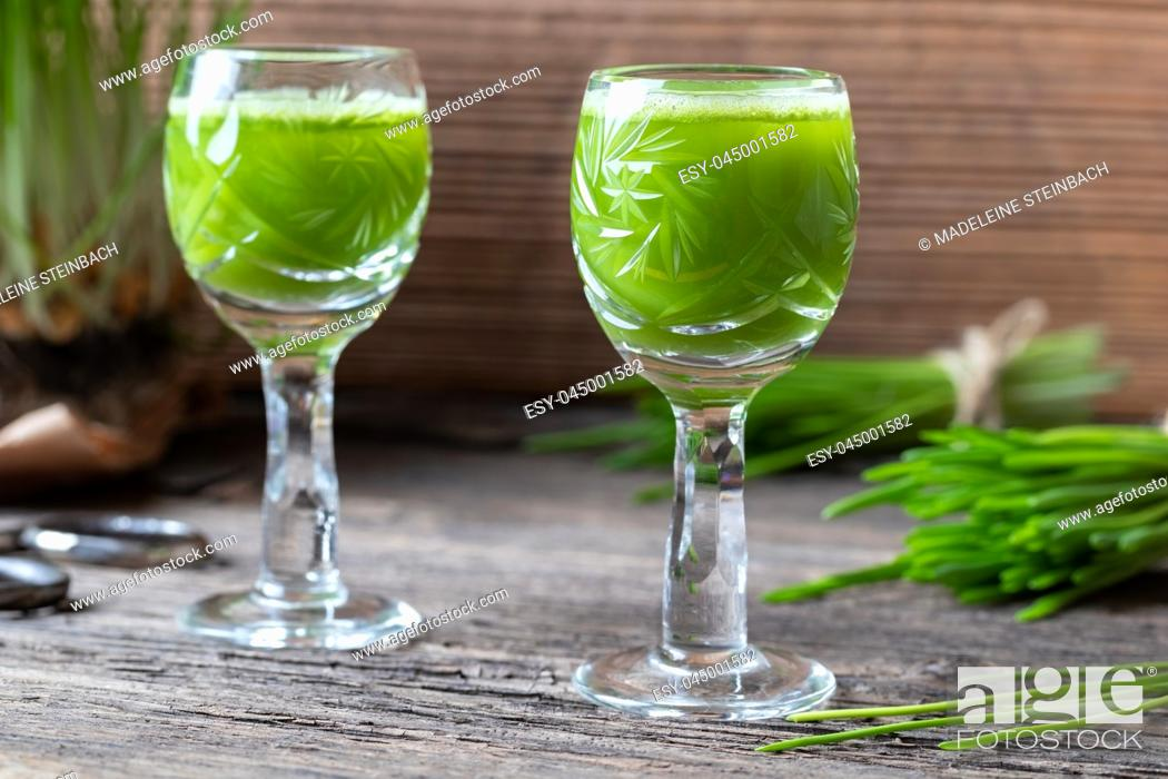 Stock Photo: Two glasses of barley grass juice with freshly grown blades.