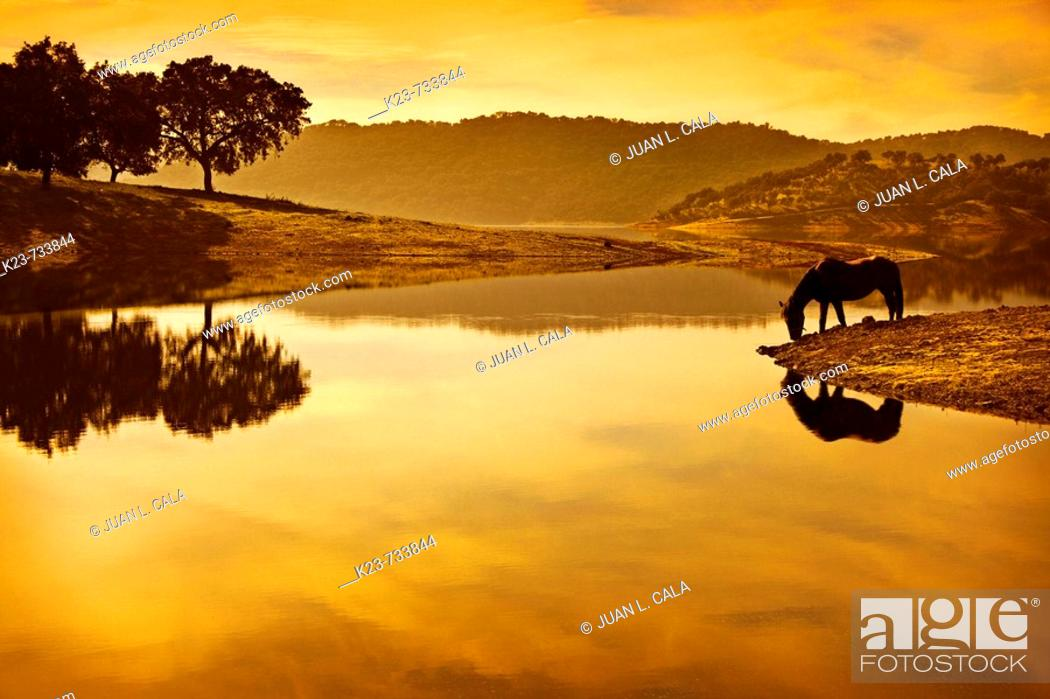 Stock Photo: Landscape, Huéznar reservoir, Seville province, Andalusia, Spain.