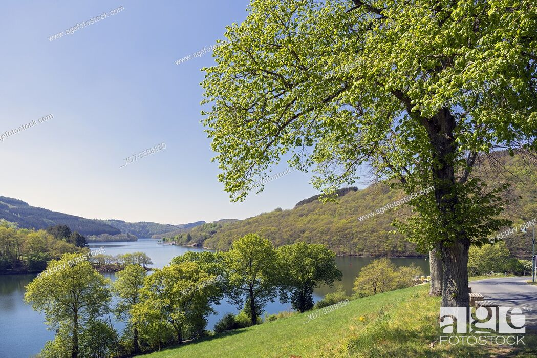 Stock Photo: Europe, Luxembourg, Diekirch, Lultzhausen, Views of Lac Sure from Viewpoint.