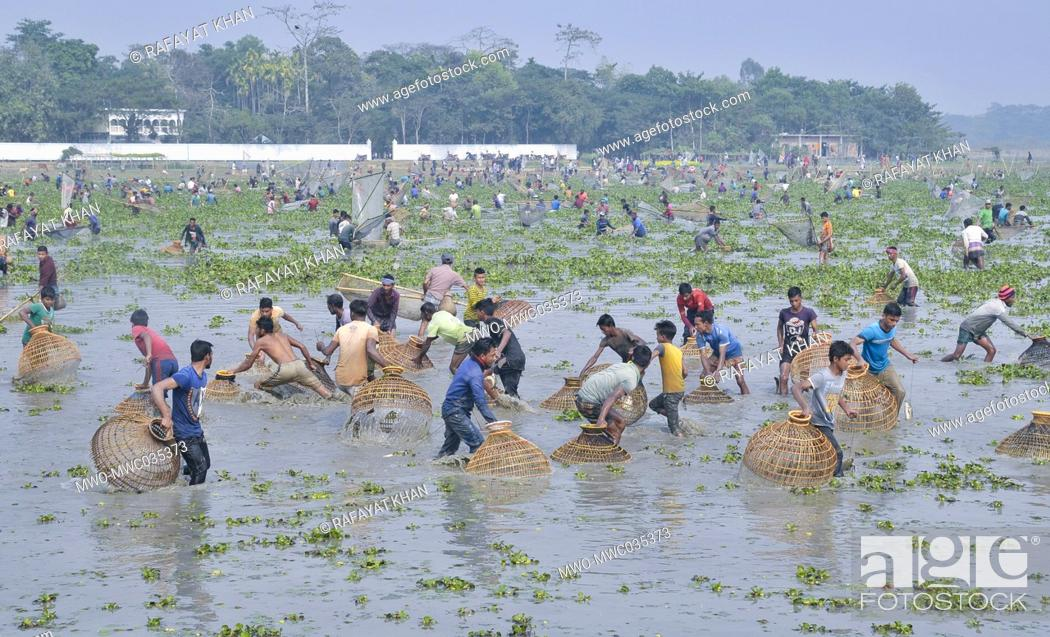 Stock Photo: Polo Bawa Utshob, a 200 year old festival. Villagers gather with their traditional fishing nets and Polo made of bamboo and cane at a Beel for a Traditional.