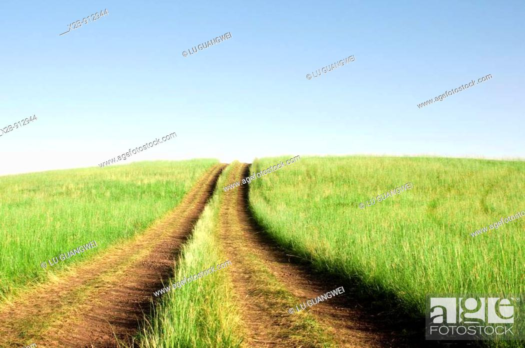 Stock Photo: July 2009,Hulunbeir landscape in China's Inner Mongolia Grassland.