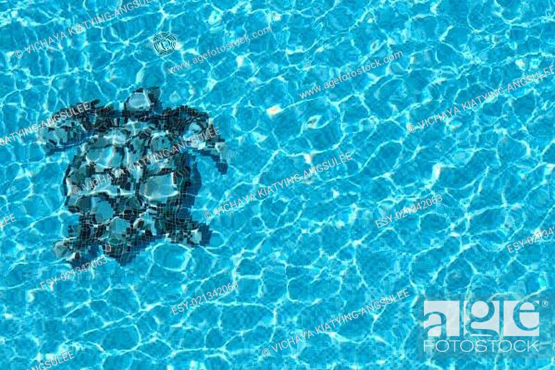 Stock Photo: pool water texture.