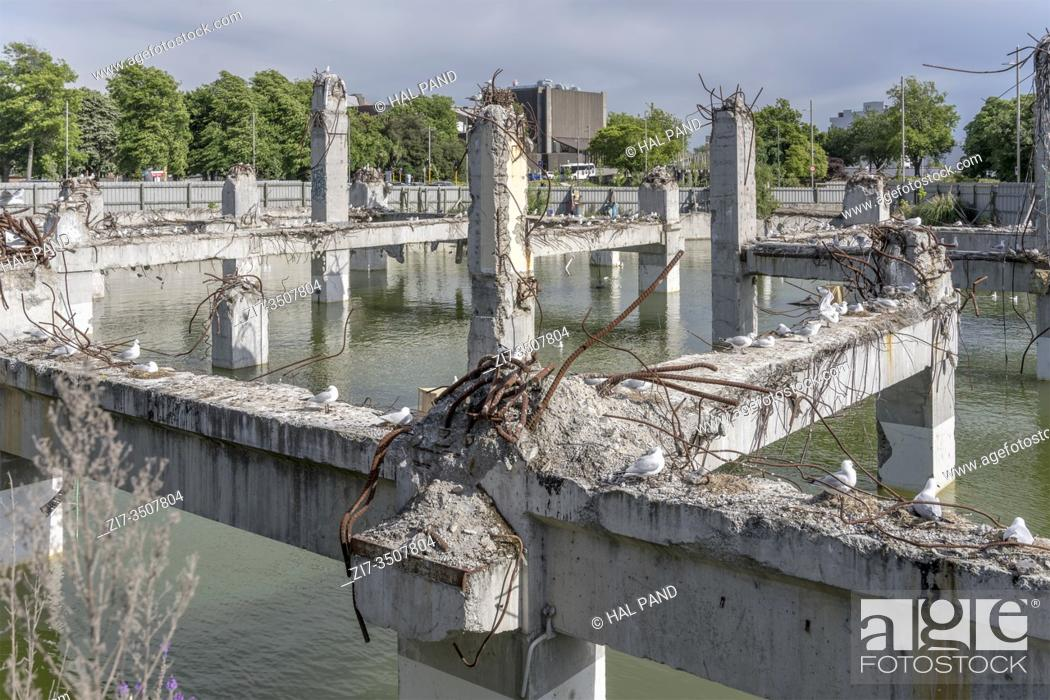 Stock Photo: cityscape with flooded ruins of collapsed concrete building framework with Black-billed gulls on wrecked pillars and warped reinforcing steel.