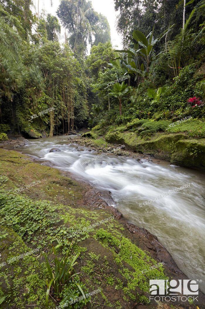 Stock Photo: Small river running through rainforest near Hotel Tjampuhan Spa. Ubud, Bali, Indonesia.